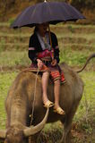Young shepherdess Flowered Hmong  sitting on his Royalty Free Stock Photography