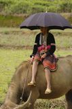 Young Shepherdess Hmong flower sitting on his buff Royalty Free Stock Photography