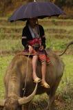 Young shepherdess Hmong flowered Stock Photo