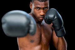 Young shirtless male boxer attacking with his right Stock Images