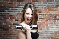 Young shouting fit woman lifting dumbbells Stock Photography