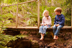 Young siblings sitting on a bridge in a forest Stock Images