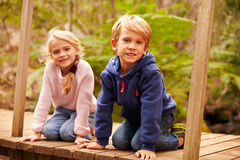 Young siblings sitting on a bridge in a forest, portrait Royalty Free Stock Photo