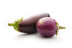 Young singe eggplant. Two young eggplants on a white background Royalty Free Stock Photo