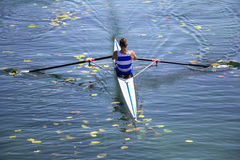 A Young single scull rowing competitor paddles on the tranquil l Stock Images