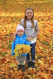 Young sisters stand together on yellow leaves. Children in park royalty free stock photos