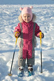 The young skier Royalty Free Stock Photography