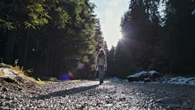 Young Slender Lady Walking on a Forest Road. Slow Motion with Sun Lense Flare. Young Slender Lady Walking on Beautiful Road in the Forest. Slow Motion with stock video footage