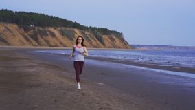 A young slim brunette in sportswear runs along the sandy shore on a summer morning, but the puppy of the dog keeps. Slow motion: a young slim brunette in stock video footage