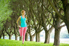 Young slim lady training in the park Stock Images