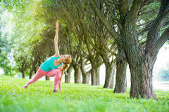 Young slim lady training in the park Royalty Free Stock Images