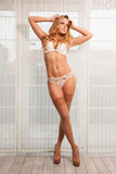 Young slim sexy woman in lingerie against the window Stock Photography