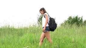 Young woman in t-shirt and shorts wanders along green meadow. Young slim woman in t-shirt and shorts wanders along green meadow with flowers near small dog in stock footage