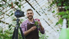 Young smiling blogger man florist in apron holding flower talking and recording video blog for his online vlog about. Young smiling blogger man florist in apron stock photos