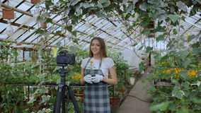 Young smiling blogger woman florist in apron talking and recording video blog for her online vlog about gardening. Young smiling blogger woman florist in apron stock video