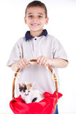 Young smiling boy with cat Royalty Free Stock Image
