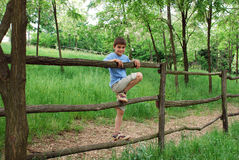 Young smiling boy on fence Stock Image