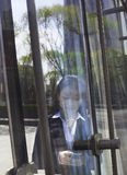 Young smiling businesswoman using the phone on the other side of a glass door Stock Images