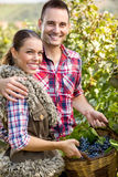 Young smiling  couple in vineyard Stock Image