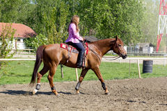 Young smiling girl riding her brown horse in a training field Royalty Free Stock Images