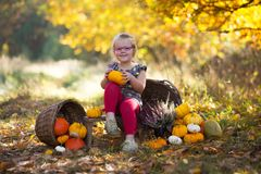 Autumn girl with pumpkin Royalty Free Stock Photo