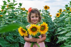 Young smiling girl with sunflowers Royalty Free Stock Photos