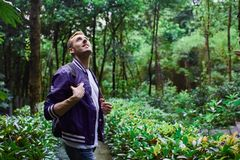Man traveling in the forest with backpack. Young smiling man wearing the purple blazer is walking in the forest with gray backpack stock photos