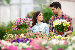 Young smiling people florists working in the garden Stock Images