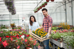 Young smiling people florists working in the garden Royalty Free Stock Images