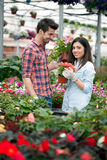 Young smiling people florists working in the garden Stock Photography