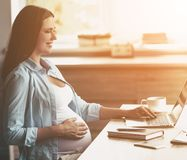Young Smiling Pregnant Woman Using Laptop at Home. royalty free stock images