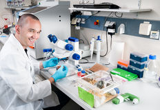 Young smiling scientist Stock Images