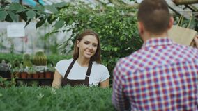 Young smiling seller florist working in garden center. Woman gives shopping bag to customer at store. Indoors Stock Photo