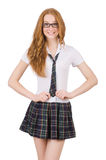 The young smiling student female isolated on white Stock Photography
