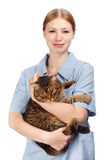 Young smiling veterinarian woman hugging adult scared tabby cat Stock Images