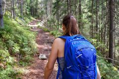 Young smiling woman with backpack hiking in forest stock photo