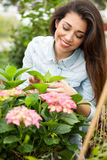 Young smiling woman florist working in the greenhouse Stock Images