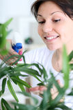 Young smiling woman spraying flowers Stock Photography