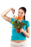 Young smiling woman watering her flowers (isolated. On white royalty free stock photos