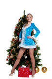 Young Snow Maiden stand with new year fir tree Royalty Free Stock Image