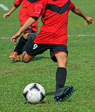 Young soccer player kicks the ball Royalty Free Stock Photo