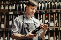 Young sommelier holding bottle of red wine in cellar. Reading information on sticker about drink. Thoughtful expert in winemaking on background of shelves with stock image