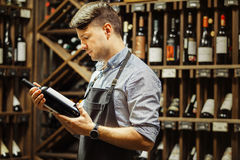 Young sommelier holding bottle of red wine in cellar Royalty Free Stock Image