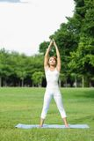 Young sport girl do yoga Stock Photography