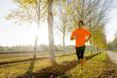 Young sport man running outdoors in off road trail ground with trees under beautiful Autumn sunlight Stock Photo