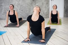 Young sportive trio group of girls are practicing yoga exercises in the studio Stock Photos