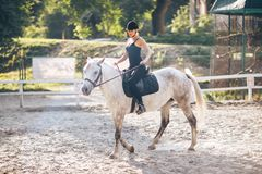 A young sports girl is riding a horse royalty free stock photo