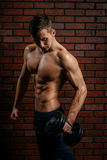 Young sports guy trains the biceps. In the gym Royalty Free Stock Photo