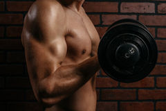 Young sports guy trains the biceps Royalty Free Stock Images