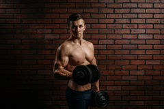 Young sports guy trains the biceps. In the gym Royalty Free Stock Image